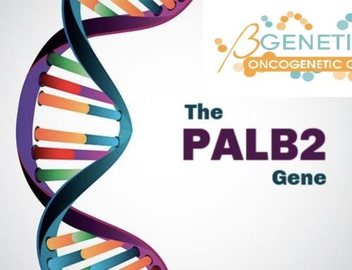 Il ruolo del gene PALB2 nel tumore al seno
